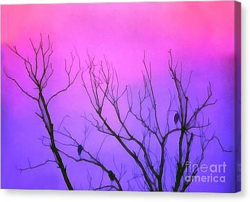 Dawn Light In Resting Birds Canvas Print by Odon Czintos