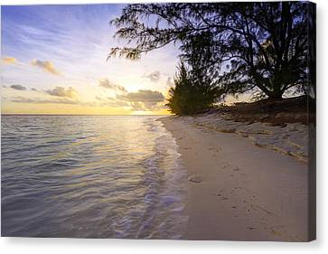 Dawn Of A New Day Canvas Print by Chad Dutson