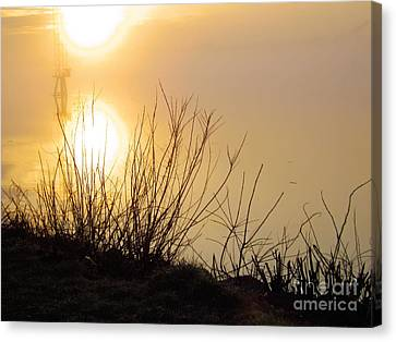 Canvas Print featuring the photograph Dawn Of A New Day by Robyn King