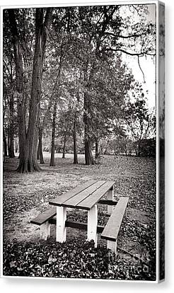 Day At The Park Canvas Print by John Rizzuto