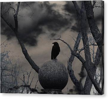 Day Dark As Night Canvas Print