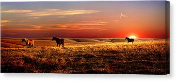 Day Is Done Canvas Print by Rod Seel