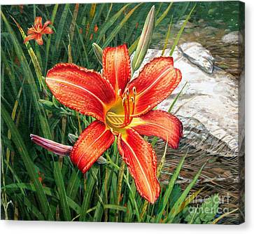 Day Lily Canvas Print by Bob  George