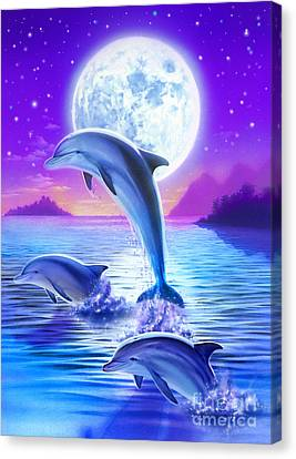 Day Of The Dolphin Canvas Print by Robin Koni