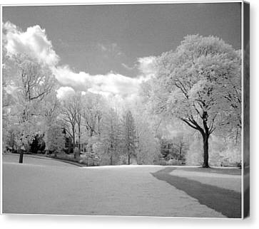 Day Walk Canvas Print by Jerome Moore