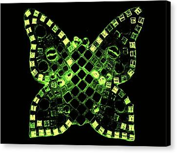 Dayglo Butterfly Canvas Print by Lisa Brandel