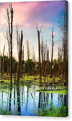 Canvas Print featuring the photograph Daylight In The Swamp by Lars Lentz