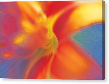 Canvas Print featuring the digital art Daylily by David Davies