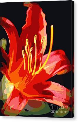 Daylily Flame Canvas Print by Carol Groenen
