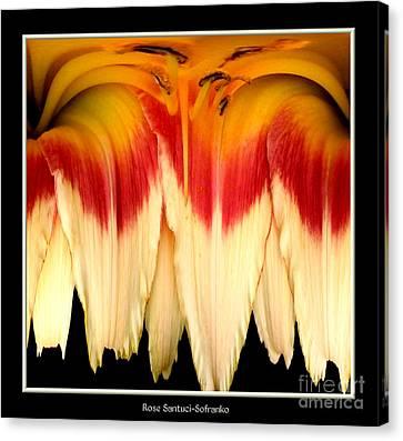 Daylily Flower Abstract 2 Canvas Print by Rose Santuci-Sofranko
