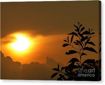 Day's Done My Sun Canvas Print