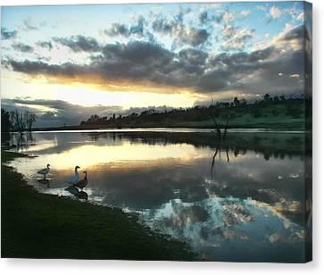 Days End At Horseshoe Lake  Canvas Print