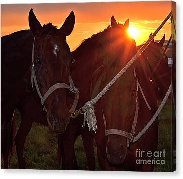 Canvas Print featuring the photograph Days End by Barbara Dudley