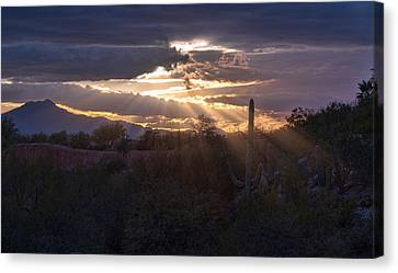 Canvas Print featuring the photograph Days End by Dan McManus