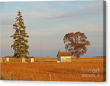 Canvas Print featuring the photograph Days End by Mary Carol Story