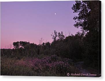 Day's Last Light Canvas Print by Michael David James
