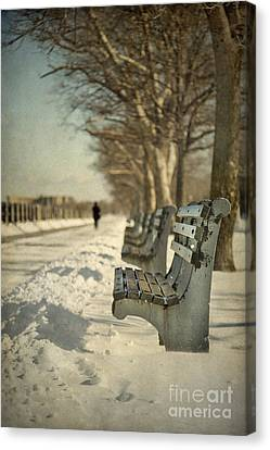 Days Of Cold Chills Canvas Print by Evelina Kremsdorf