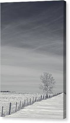 Days Turn Into Months Canvas Print