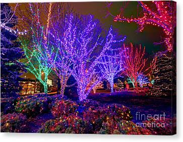 Dazzling Christmas Lights Canvas Print by Martin Konopacki