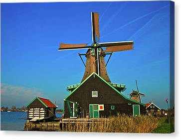 De Kat On De Zaan Canvas Print by Jonah  Anderson