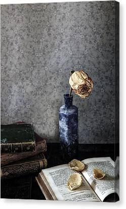 Dead Rose Canvas Print