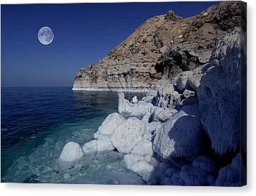 Dead Sea Canvas Print by Christian Heeb