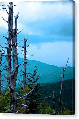 Dead Skies Canvas Print by Russell Clenney