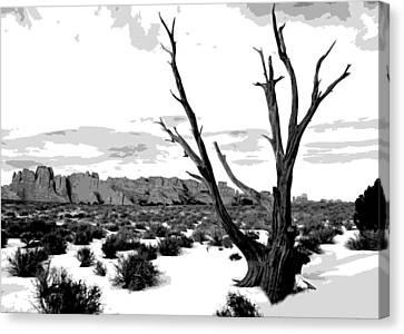 Dead Tree In Winter Canvas Print by Jack McAward