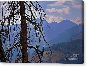 Dead Tree Mountains Landscape Canvas Print by Valerie Garner