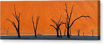 Dead Trees By Red Sand Dunes, Dead Canvas Print by Panoramic Images