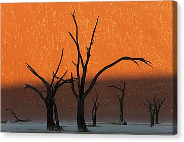 Dead Trees In Dry Clay Pan, Dead Vlei Canvas Print
