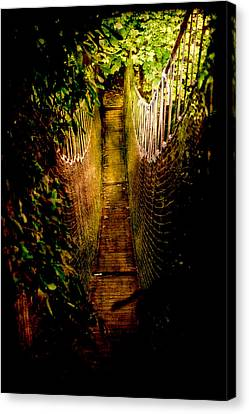Deadly Path Canvas Print by Loriental Photography