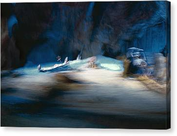 Disney Canvas Print - Death Of A Mermaid by Ryan Crane