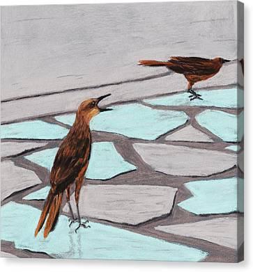 Death Valley Birds Canvas Print