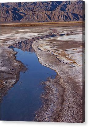 Death Valley Salt Stream 1 Canvas Print