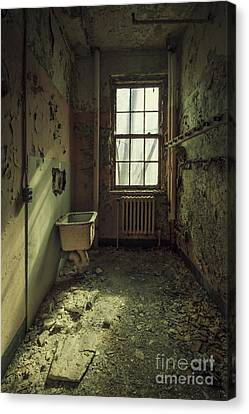 Asylum Canvas Print - Decade Of Decay by Evelina Kremsdorf