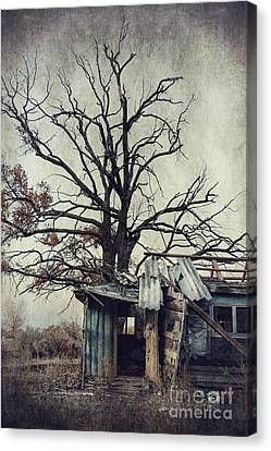 Decay Barn Canvas Print by Svetlana Sewell