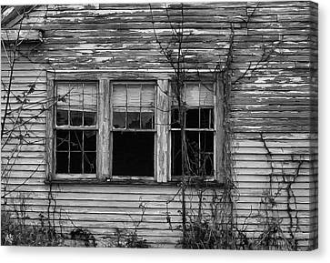 Decay Canvas Print by Hazel Billingsley