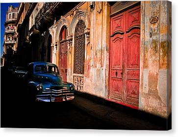 Decaying Beauty  Canvas Print by Cecil K Brissette