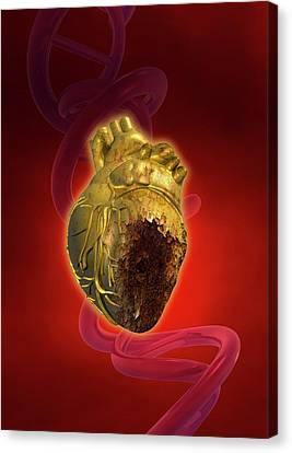 Heart Disease Canvas Print - Decaying Heart by Victor Habbick Visions