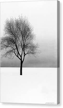 December 11 Canvas Print by Doug Fluckiger