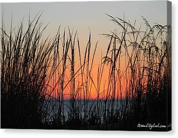 December Dawn Canvas Print