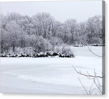 December Lake Canvas Print by Debbie Hart