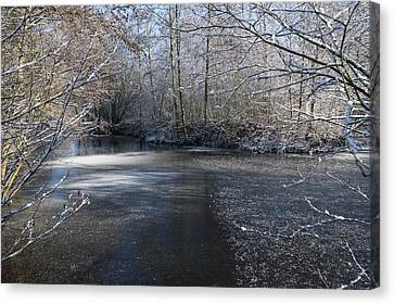 December Lake Canvas Print by Svetlana Sewell