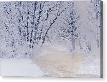 December Riverscape Canvas Print by Alan L Graham