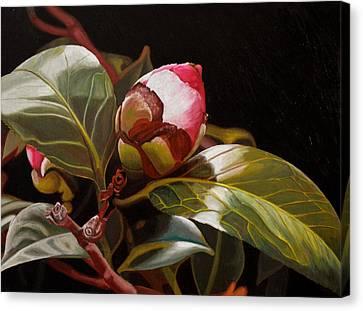 December Rose Canvas Print