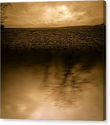 December Sky Canvas Print by Bob Orsillo