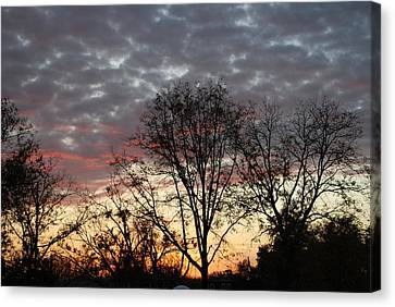 Canvas Print featuring the photograph December Sunset by Ramona Whiteaker