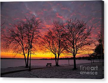 Canvas Print featuring the photograph December Sunset by Terri Gostola