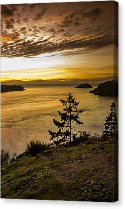 Deception Pass Canvas Print by Calazone's Flics